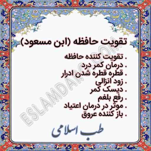 خواص تقویت حافظه (ابن مسعود)