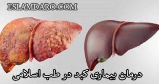 درمان بیماری کبد در طب اسلامی