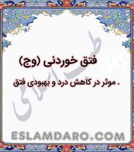 داروی فتق خوردنی (وج) در طب اسلامی