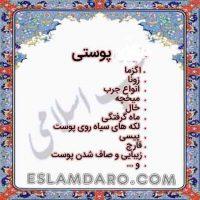 پوستی در طب اسلامی