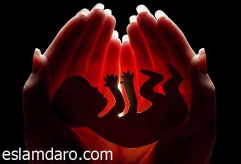 جلوگیری از سقط جنین در طب اسلامی