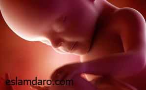 سقط کردن جنین یا زنده متولد شدن فرزند
