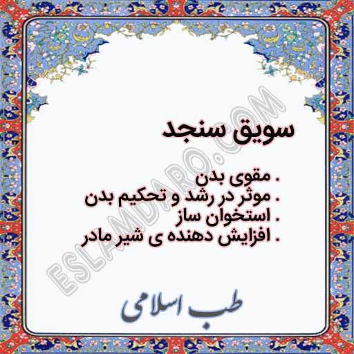 سویق سنجد و خواص آن در طب اسلامی