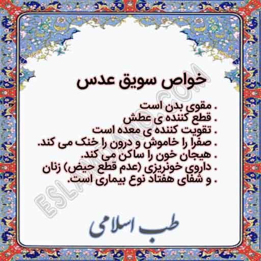 سویق عدس درمان کننده بسیاری از بیماریها و مقوی بدن در طب اسلامی