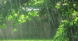 شفا بخشی آب باران در طب اسلامی