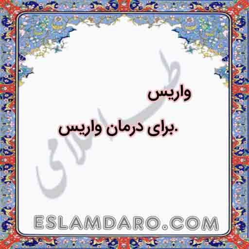 درمان طبیعی واریس در طب اسلامی