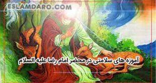 طب اسلامی در محضر امام رضا علیه السلام