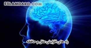 راه های افزایش و تقویت عقل و حافظه در طب اسلامی