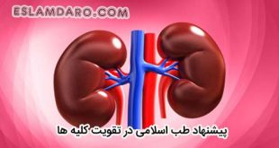 راه تقویت و نگهداری از کلیه در طب اسلامی