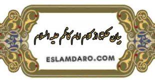 کلام امام کاظم علیه السلام در حکمت دندان و آب دهان