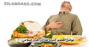 عوامل هضم کننده غذا در روایات