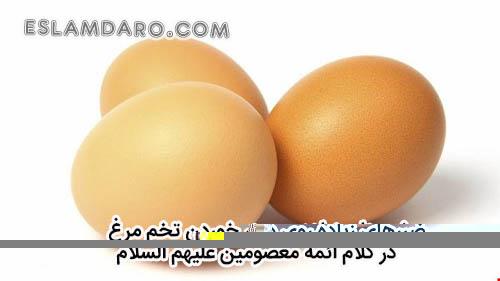 ضررهای زیاده روی در خوردن تخم مرغدر کلام معصومین