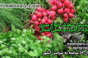سفارش سبزی محلی شمال به سراسر کشور