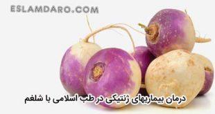 درمان بیماریهای ژنتیکی با شلغم در طب اسلامی