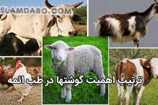 ترتیب اهمیت گوشت ها