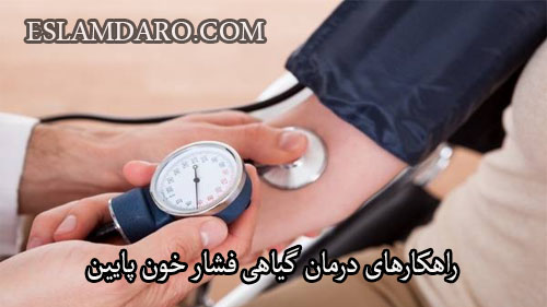 راهکارهای درمان گیاهی فشار خون پایین