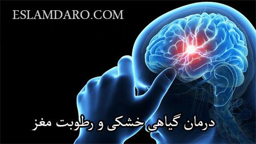 درمان گیاهی خشکی و رطوبت مغز