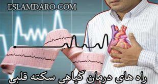 راه های درمان گیاهی سکته قلبی